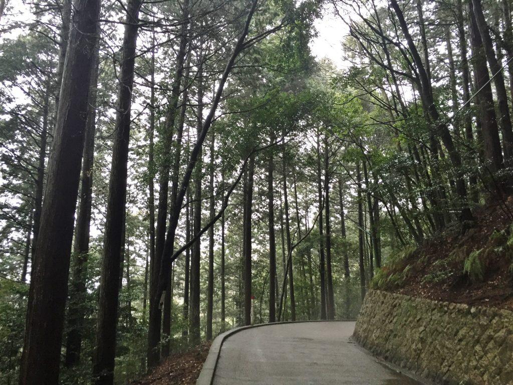 岩国城登頂路