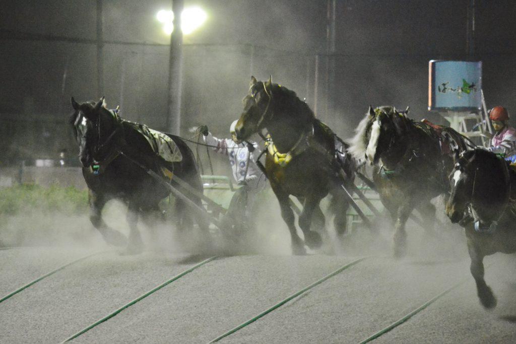 ばんえい レース2
